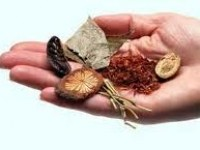 The Properties of the Chinese Herbs